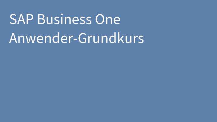 SAP Business One Anwender-Grundkurs