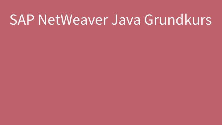SAP NetWeaver Java Grundkurs