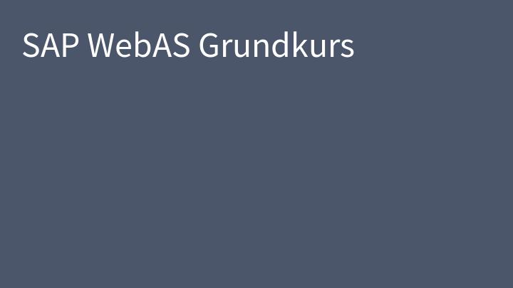 SAP WebAS Grundkurs