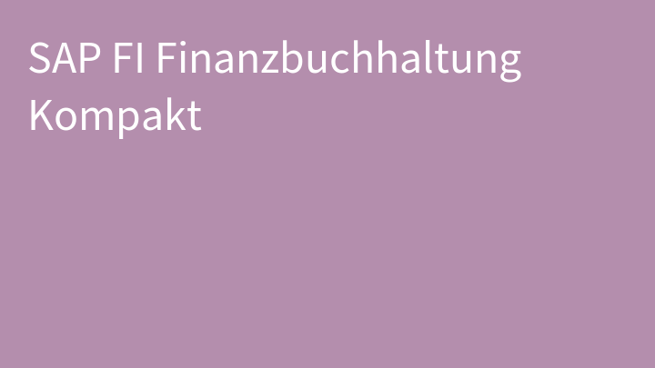 SAP FI Finanzbuchhaltung Kompakt
