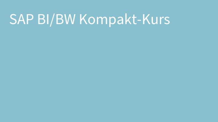 SAP BI/BW Kompakt-Kurs