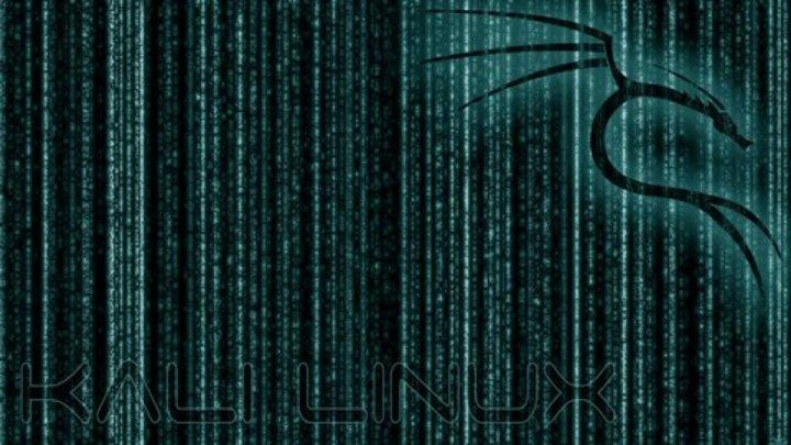 IT Sicherheitstests und Ethical Hacking mit Kali Linux