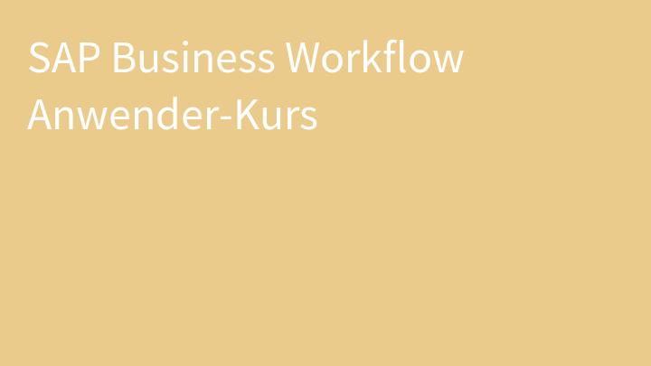SAP Business Workflow Anwender-Kurs