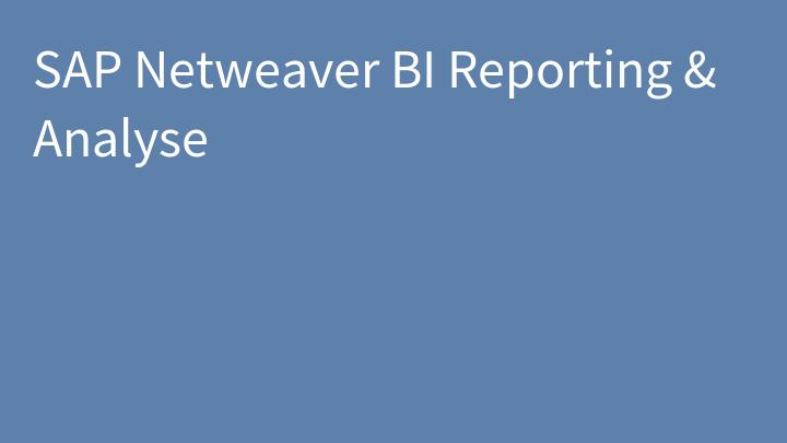 SAP Netweaver BI Reporting & Analyse